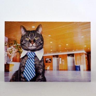 """Atvirukas """"Biuro katinas"""""""