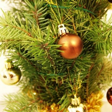 Kalėdinės eglutės gamyba iš natūralių eglės šakų