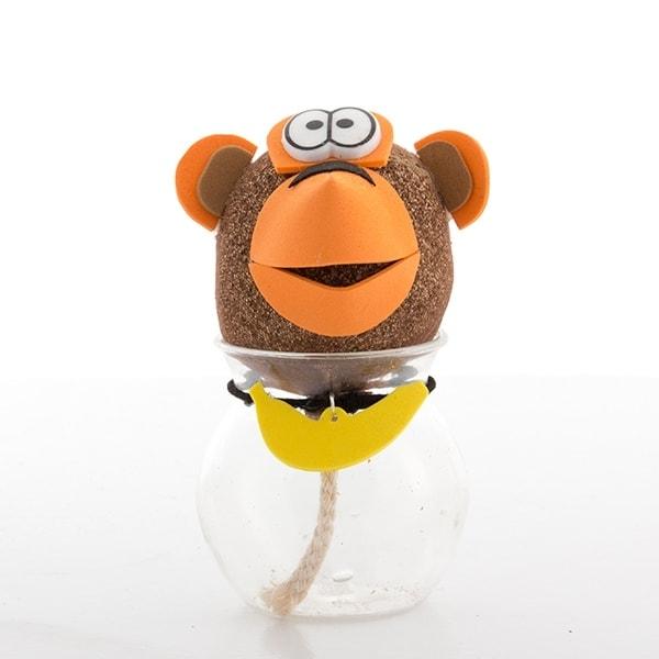 Daiginama bezdžionės galva