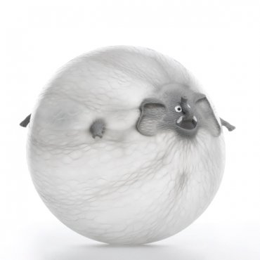 Pripučiamas kamuolys gyvūnas